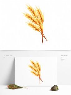秋分秋收农作物麦穗矢量元素