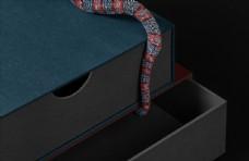 包装盒商业摄影