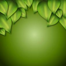 绿色树叶背景