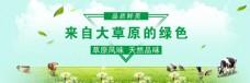 草原特产淘宝海报