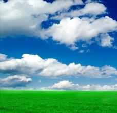 蓝天白云下的草地