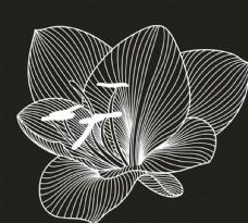 矢量素材花