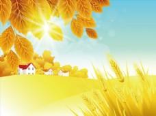 秋天日出风景