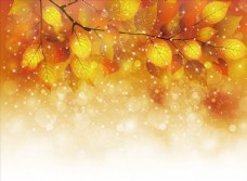 秋天梦幻背景