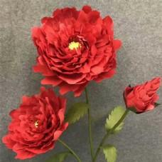 精致小红花