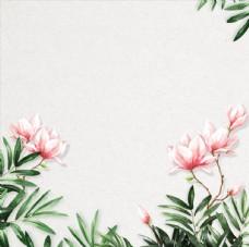 植物绿叶淘宝主图海报背景素材