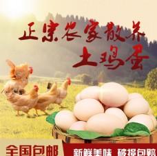 土鸡蛋主图